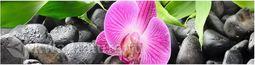 Кухонный фартук ХДФ Орхидея №2
