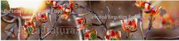 Кухонный фартук МДФ Цветущее дерево с эффектом мерцания